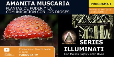SERIES ILLUMINATI programa 1 web