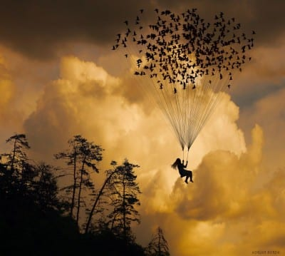 The-Seed-of-Freedom-Photography-by-Adrian-Borda-flying-birds-surreal-fantasy-1024x920