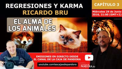 Regresiones y Karma 3